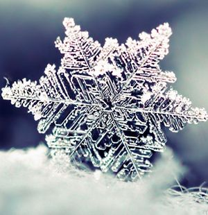 winter_main