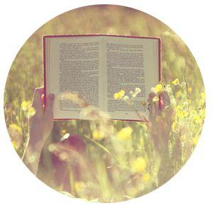 book_summer_main