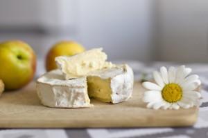 cheese1_main
