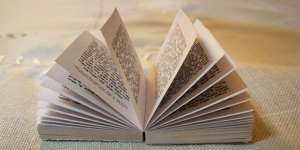 book5_long