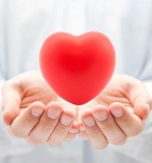 heart_main