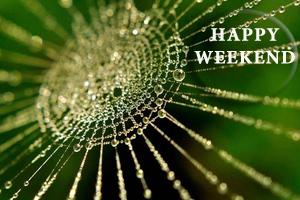 weekend_main10
