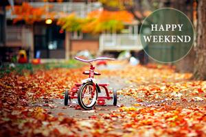 autumn_main