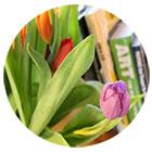 books_spring_sm